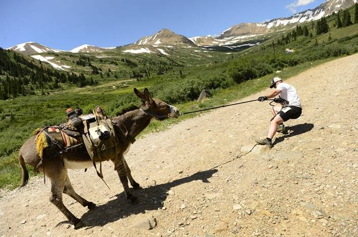 Donkey making it hard for a hiker to lead him